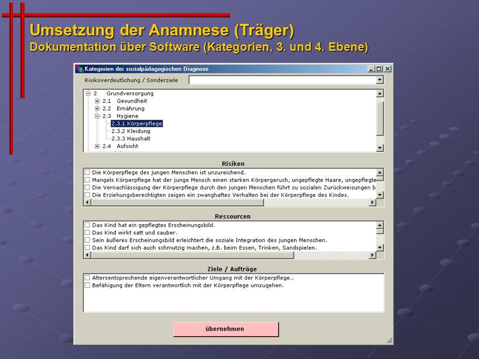 Umsetzung der Anamnese (Träger) Dokumentation über Software (Kategorien, 3. und 4. Ebene)