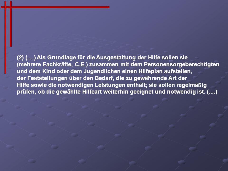 (2) (....) Als Grundlage für die Ausgestaltung der Hilfe sollen sie