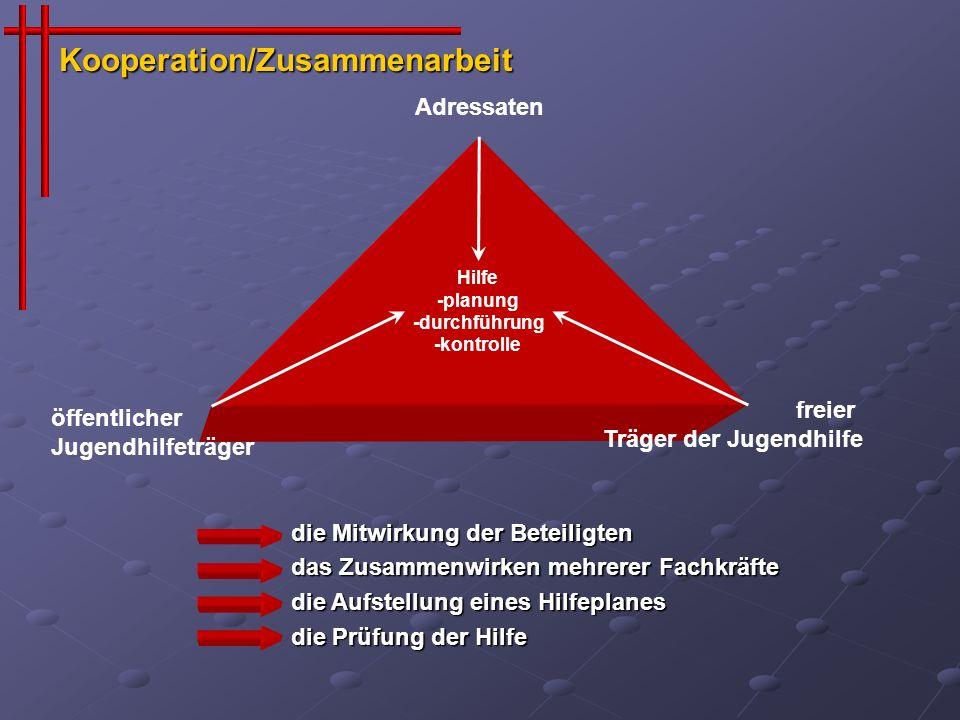 Hilfe -planung -durchführung -kontrolle