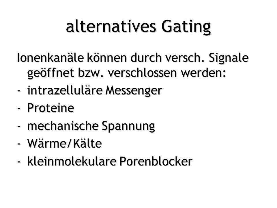 alternatives Gating Ionenkanäle können durch versch. Signale geöffnet bzw. verschlossen werden: intrazelluläre Messenger.