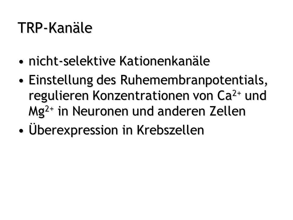 TRP-Kanäle nicht-selektive Kationenkanäle