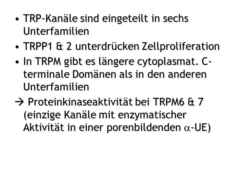 TRP-Kanäle sind eingeteilt in sechs Unterfamilien