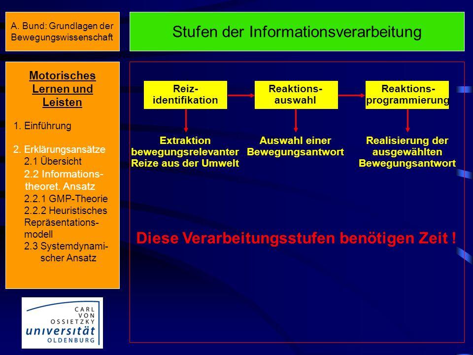 Stufen der Informationsverarbeitung
