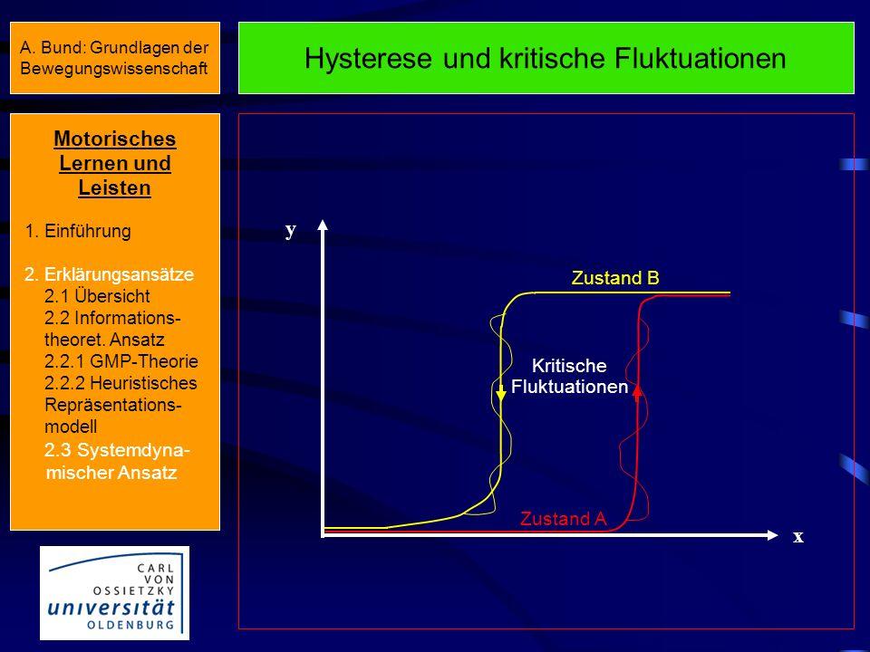 Hysterese und kritische Fluktuationen