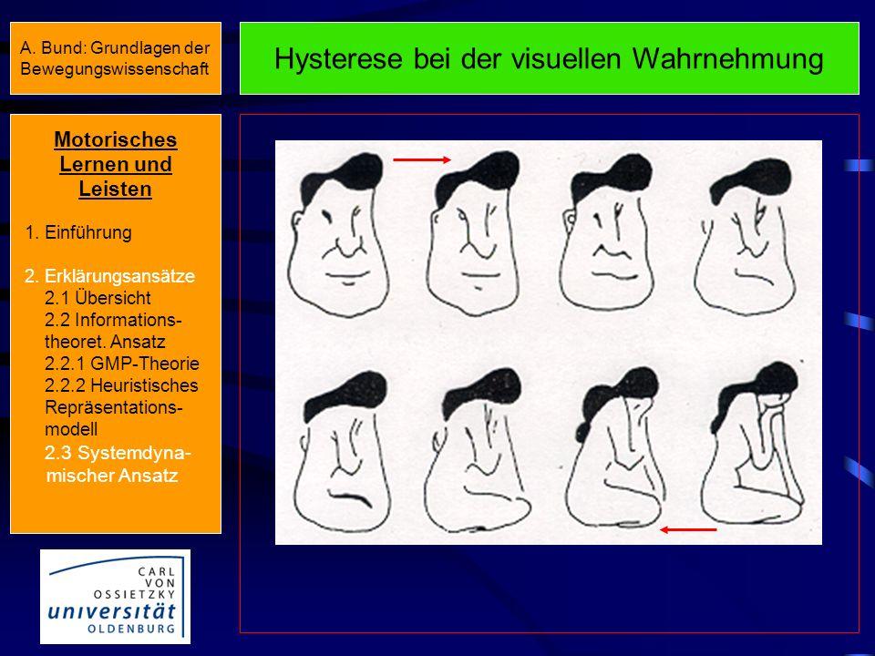 Hysterese bei der visuellen Wahrnehmung