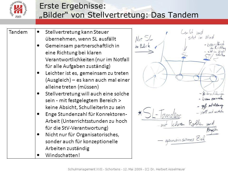 """Erste Ergebnisse: """"Bilder von Stellvertretung: Das Tandem"""