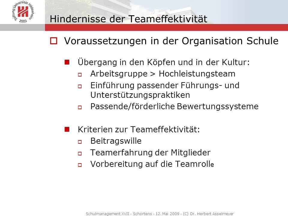 Hindernisse der Teameffektivität