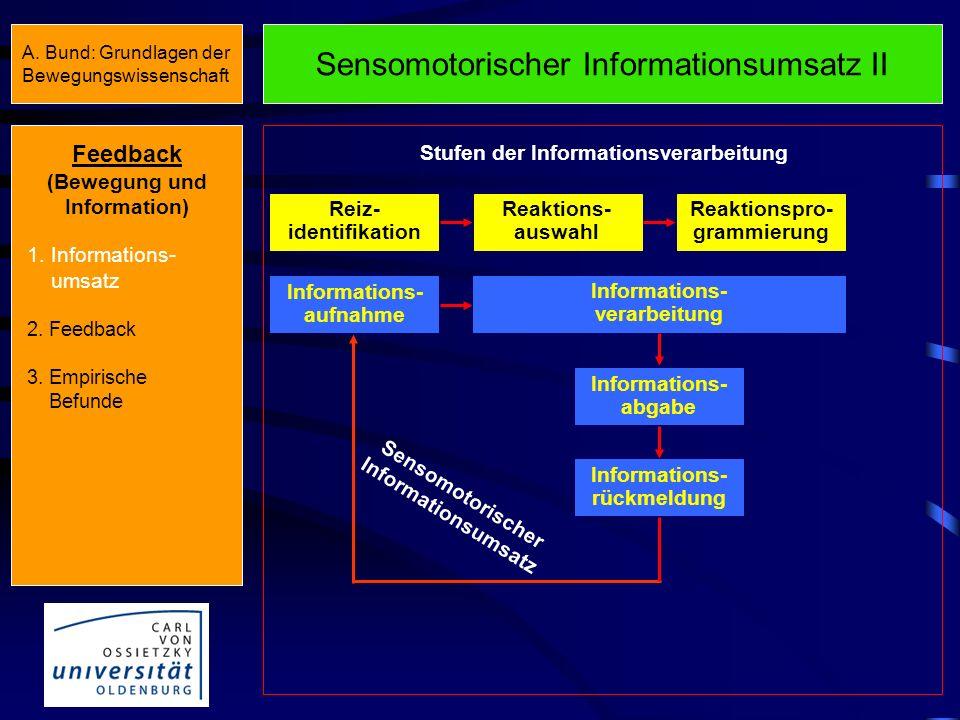Sensomotorischer Informationsumsatz II Feedback