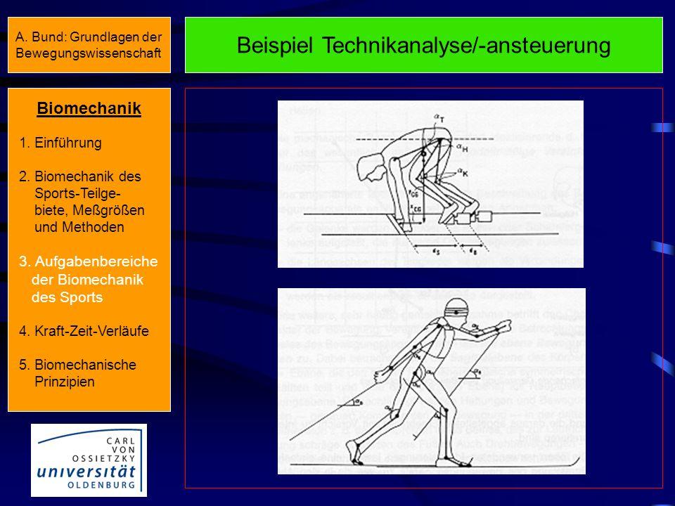 Beispiel Technikanalyse/-ansteuerung