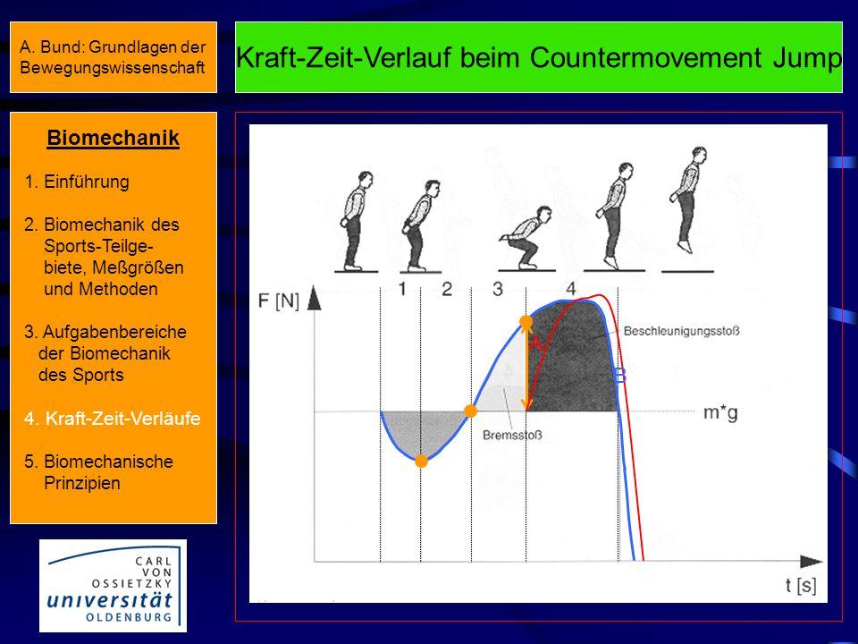 Kraft-Zeit-Verlauf beim Countermovement Jump