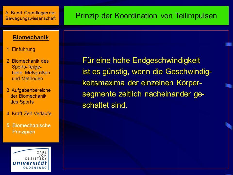 Prinzip der Koordination von Teilimpulsen