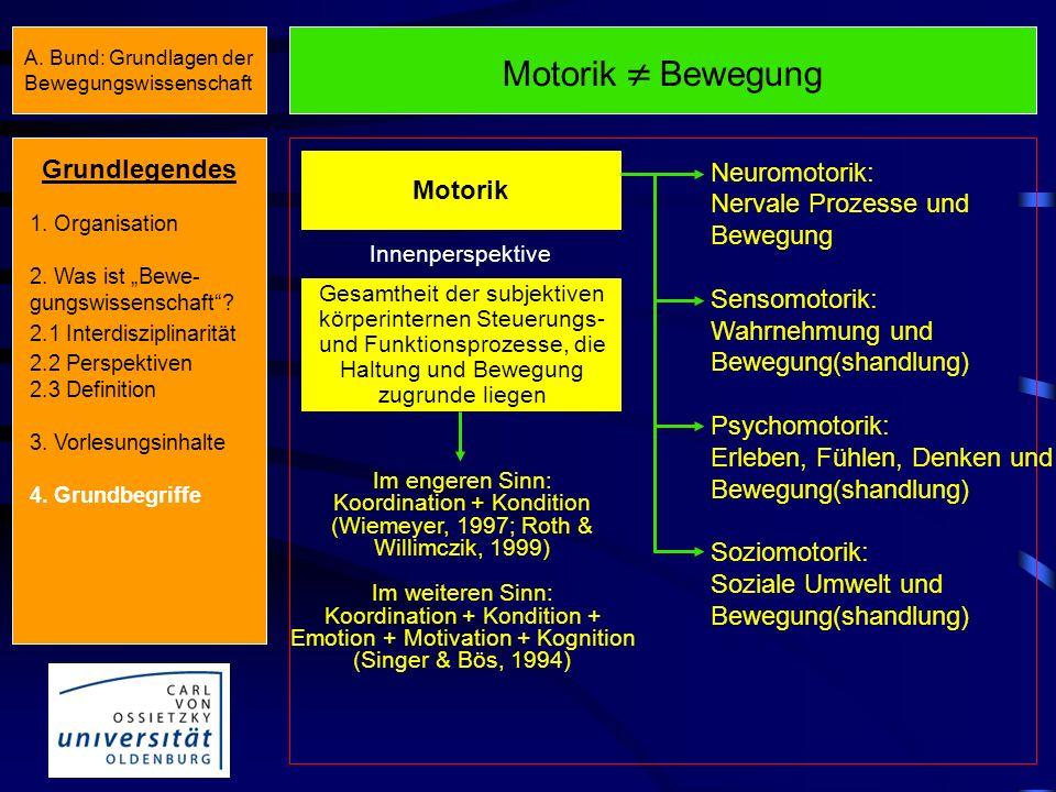 Motorik  Bewegung Grundlegendes Neuromotorik: Motorik
