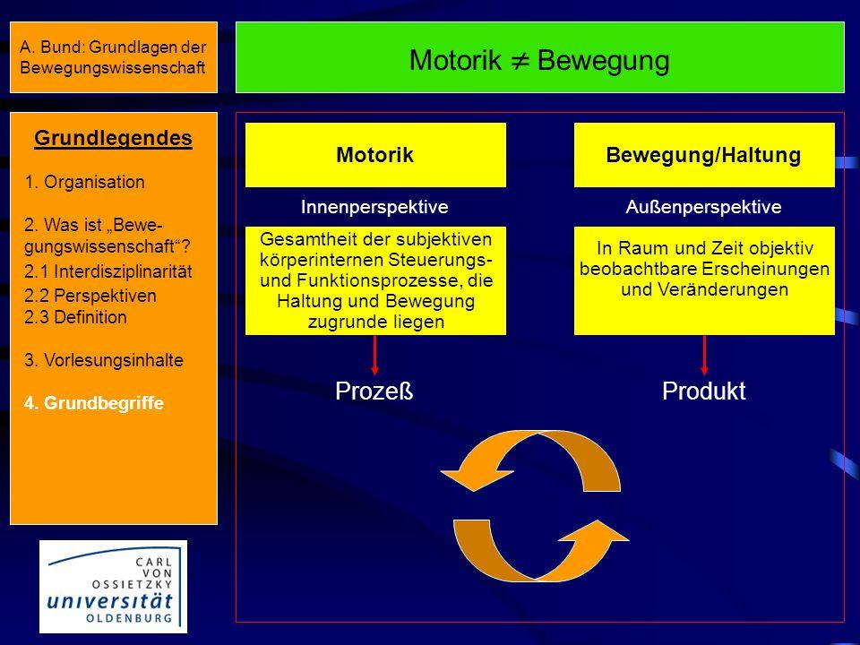 Motorik  Bewegung Produkt Prozeß Grundlegendes Bewegung/Haltung