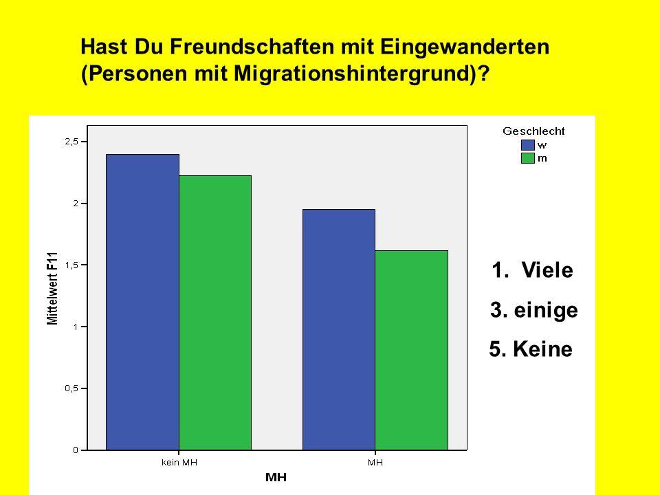 Hast Du Freundschaften mit Eingewanderten (Personen mit Migrationshintergrund)