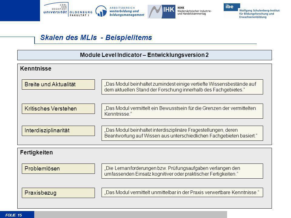 Skalen des MLIs - Beispielitems