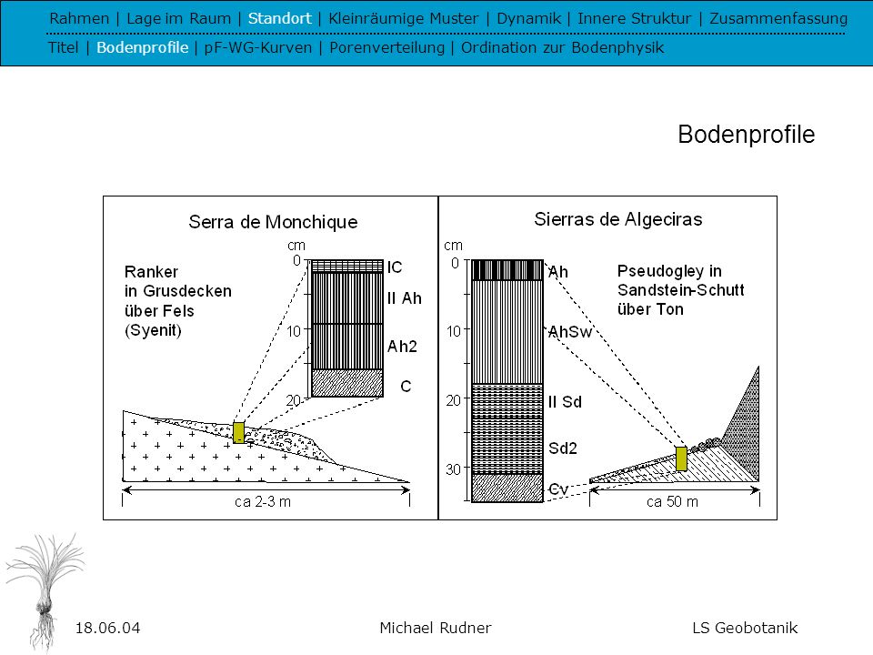 Rahmen | Lage im Raum | Standort | Kleinräumige Muster | Dynamik | Innere Struktur | Zusammenfassung