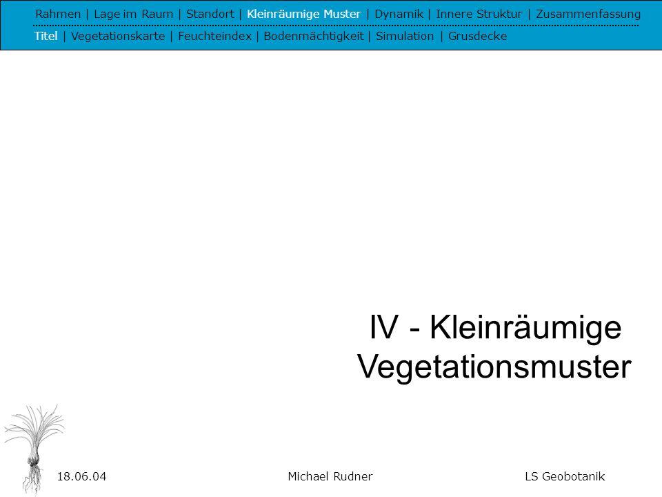 IV - Kleinräumige Vegetationsmuster