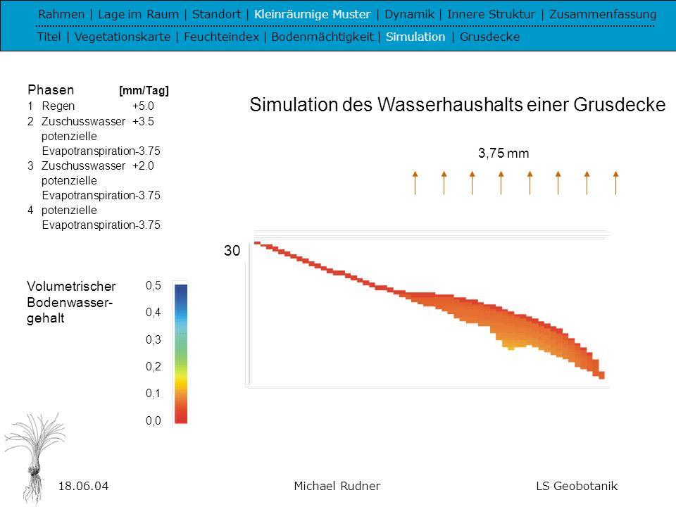 Simulation des Wasserhaushalts einer Grusdecke