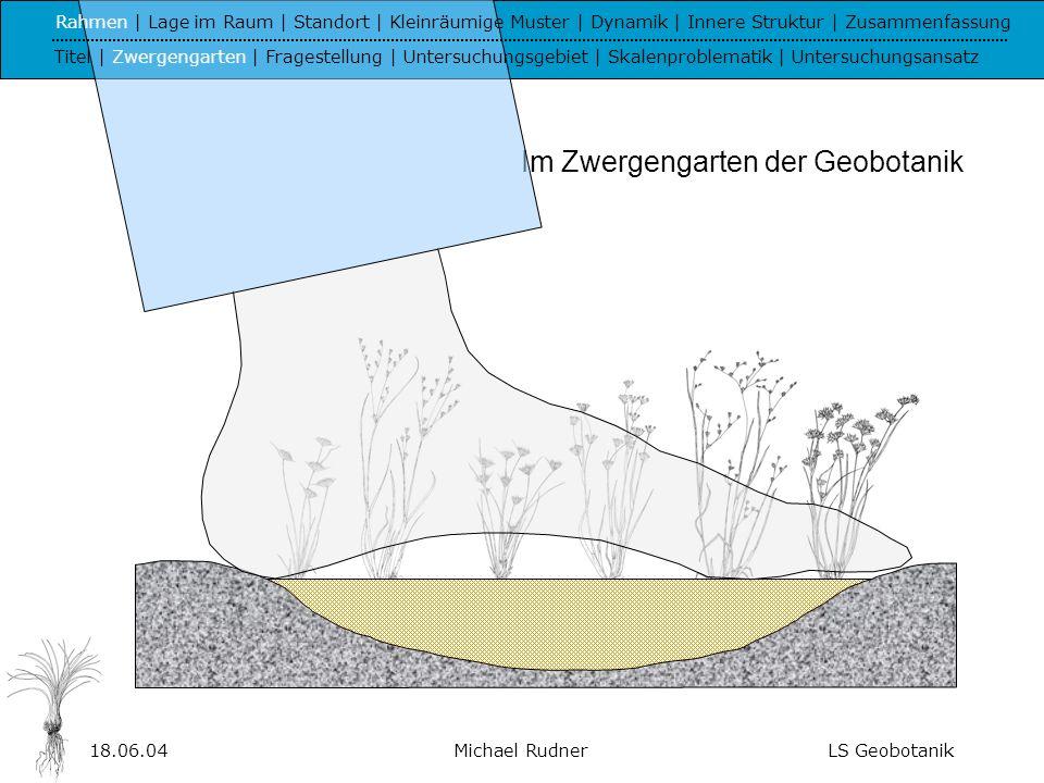Im Zwergengarten der Geobotanik