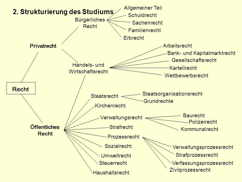 2. Strukturierung des Studiums