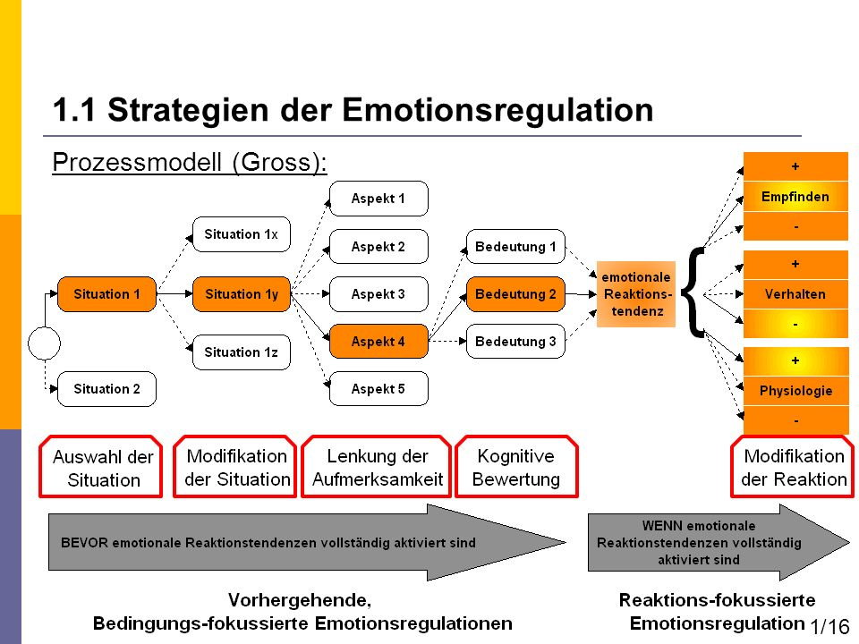 1.1 Strategien der Emotionsregulation