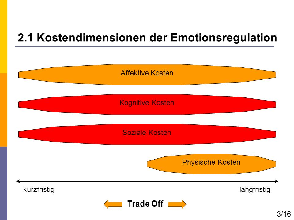 2.1 Kostendimensionen der Emotionsregulation