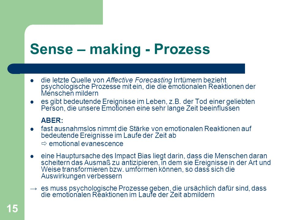 Sense – making - Prozess