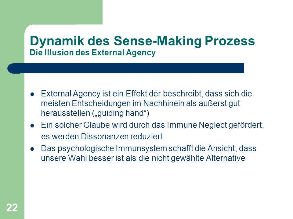Dynamik des Sense-Making Prozess Die Illusion des External Agency