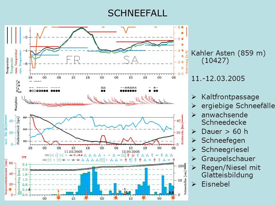 SCHNEEFALL Kahler Asten (859 m) (10427) 11.-12.03.2005