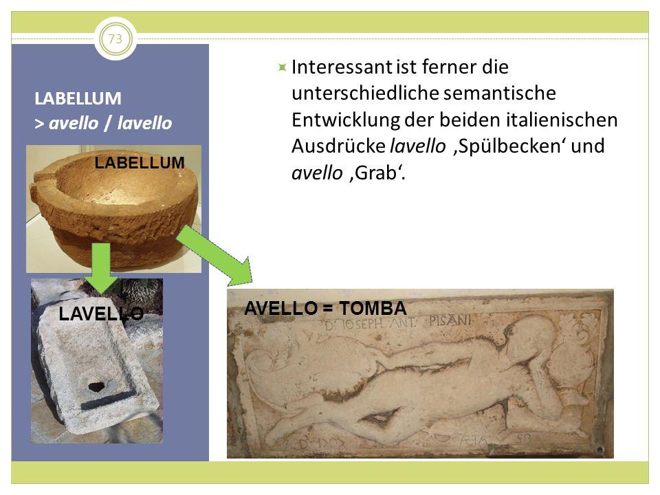 LABELLUM > avello / lavello