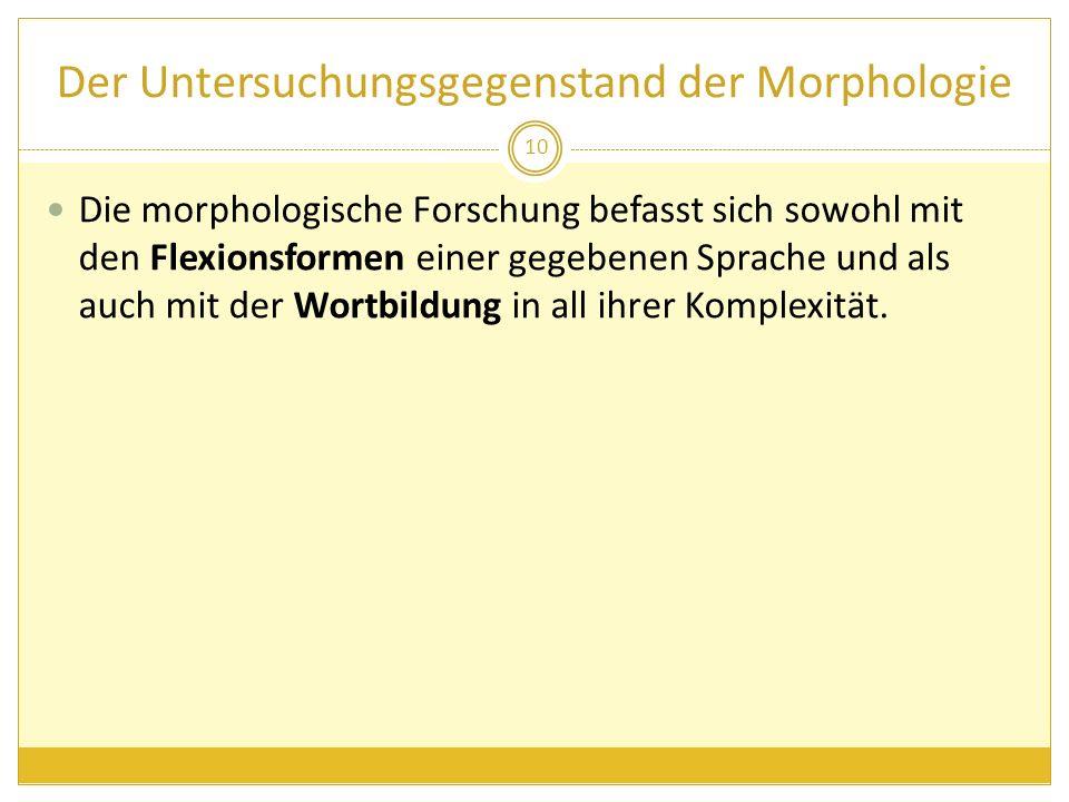 Der Untersuchungsgegenstand der Morphologie