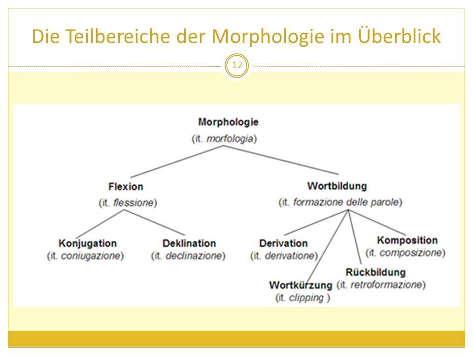 Die Teilbereiche der Morphologie im Überblick