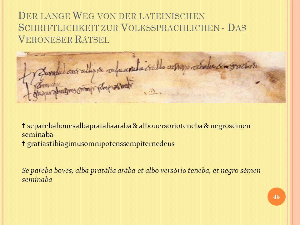 Der lange Weg von der lateinischen Schriftlichkeit zur Volkssprachlichen - Das Veroneser Rätsel
