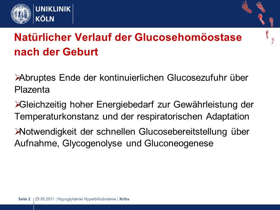 Natürlicher Verlauf der Glucosehomöostase nach der Geburt