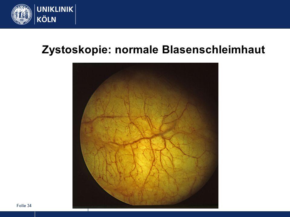 Zystoskopie: normale Blasenschleimhaut