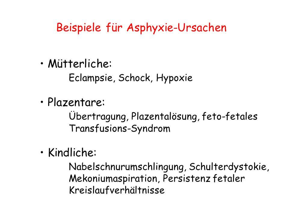 Beispiele für Asphyxie-Ursachen