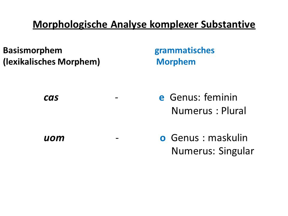 Morphologische Analyse komplexer Substantive