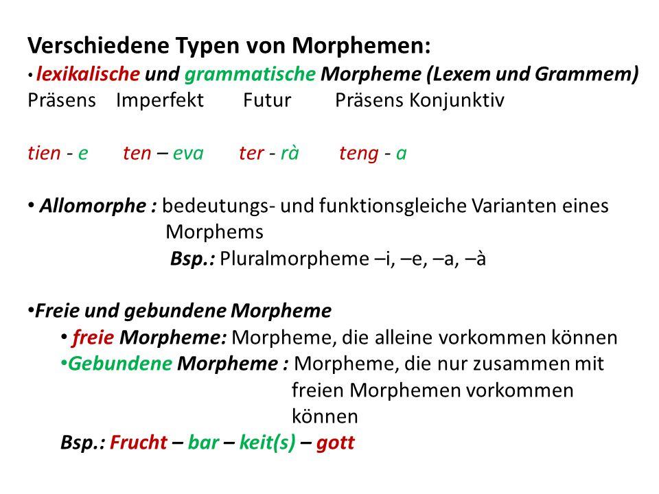 Verschiedene Typen von Morphemen: