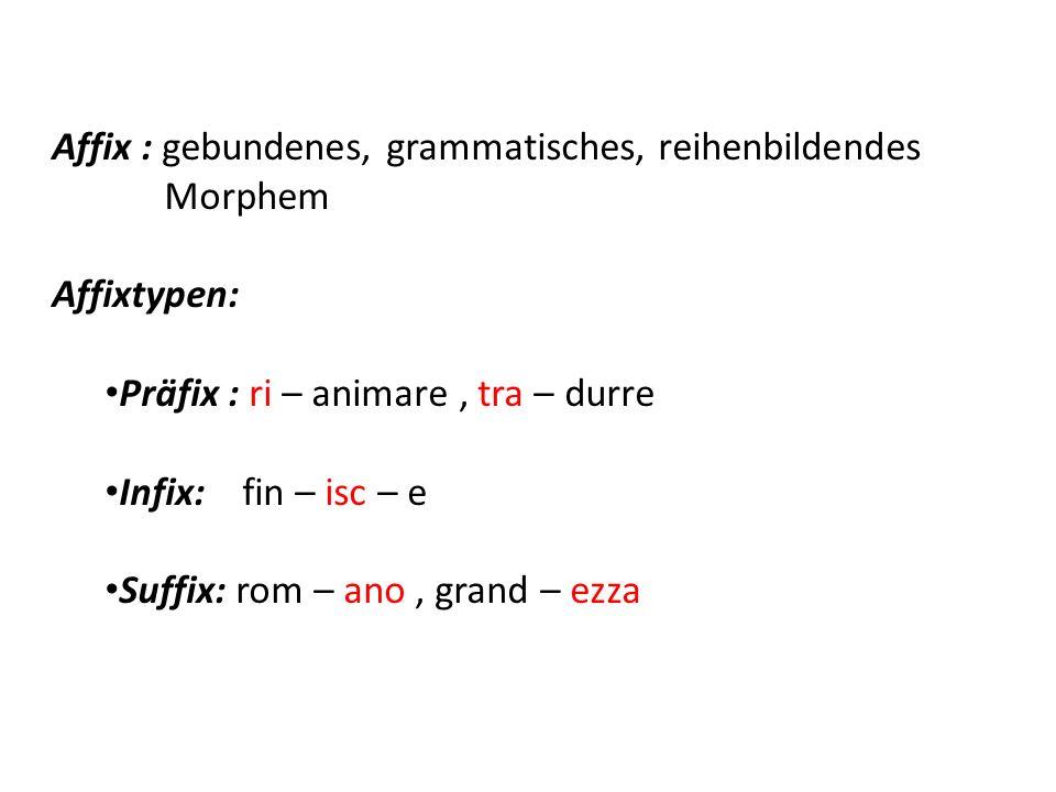 Affix : gebundenes, grammatisches, reihenbildendes