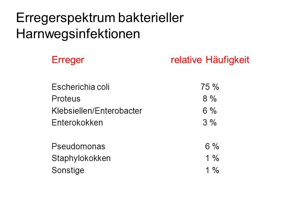 Erregerspektrum bakterieller Harnwegsinfektionen