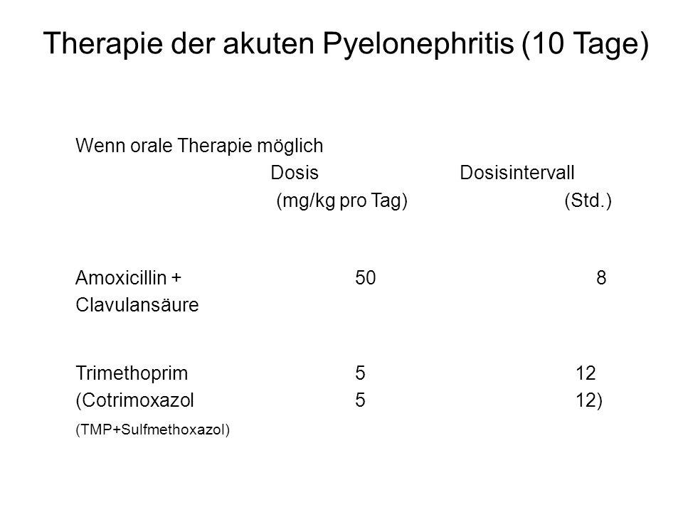Therapie der akuten Pyelonephritis (10 Tage)