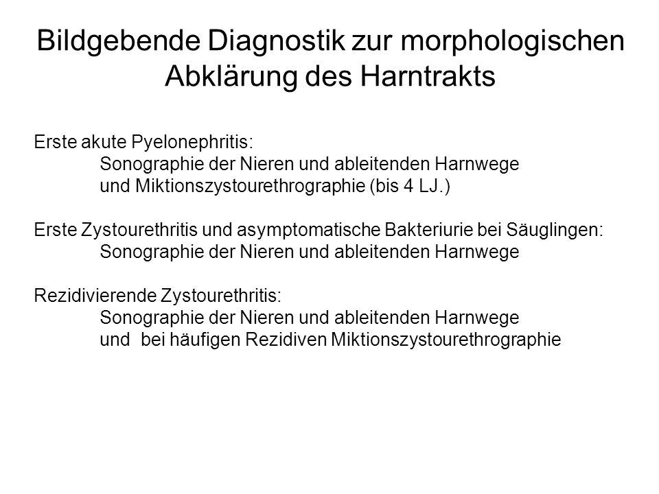 Bildgebende Diagnostik zur morphologischen Abklärung des Harntrakts