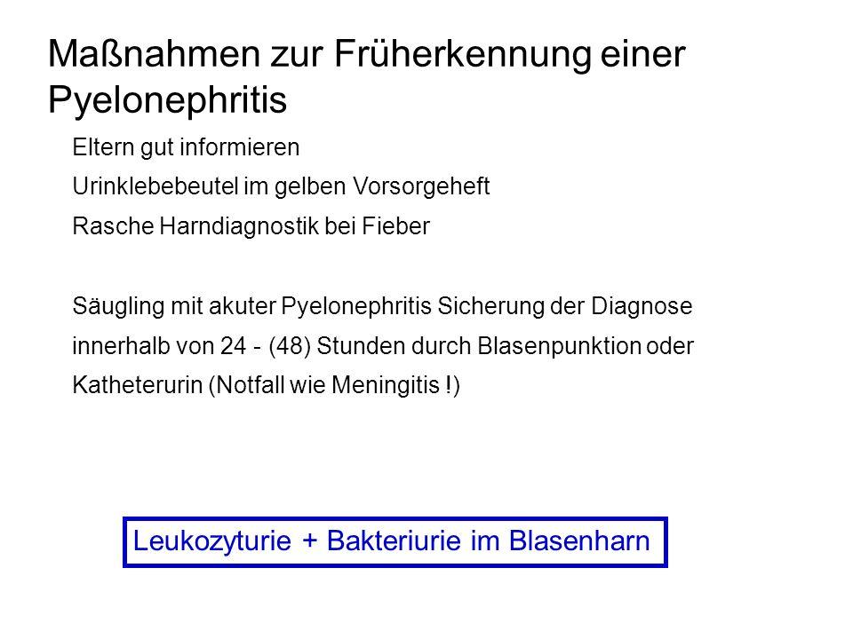Maßnahmen zur Früherkennung einer Pyelonephritis
