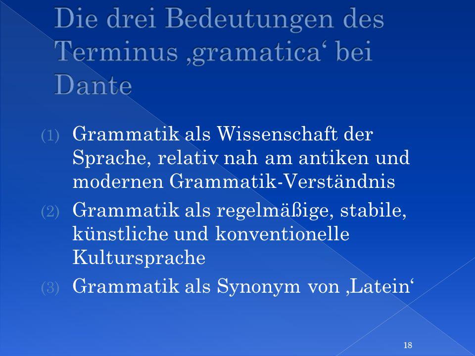 Die drei Bedeutungen des Terminus 'gramatica' bei Dante