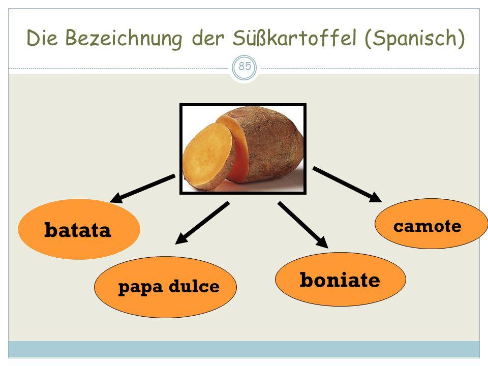 Die Bezeichnung der Süßkartoffel (Spanisch)