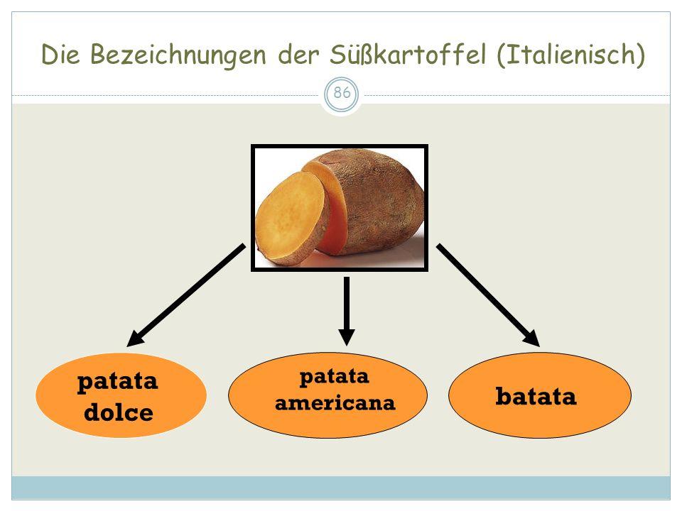Die Bezeichnungen der Süßkartoffel (Italienisch)