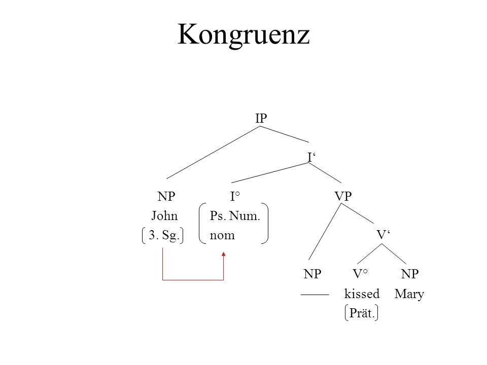 Kongruenz IP I' NP I° VP John Ps. Num. 3. Sg. nom V' NP V° NP