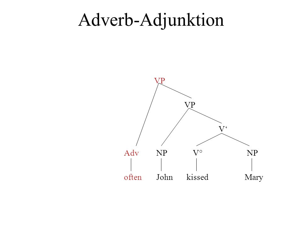 Adverb-Adjunktion VP V' Adv NP V° NP often John kissed Mary