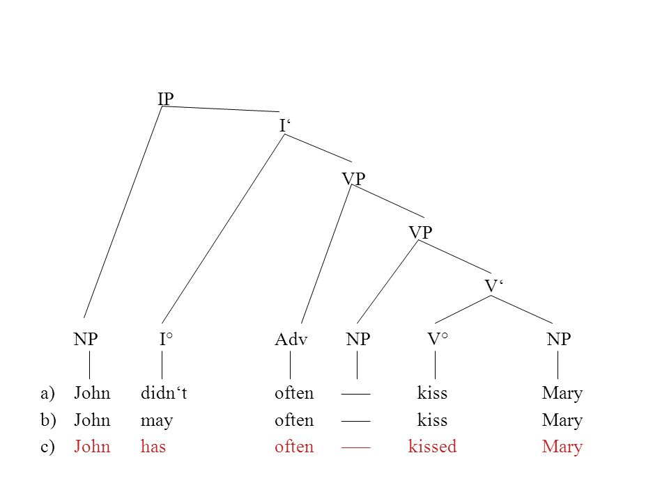 IP I' VP. V' NP I° Adv NP V° NP. a) John didn't often ––– kiss Mary. b) John may often ––– kiss Mary.