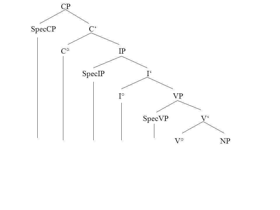 CP SpecCP C' C° IP SpecIP I' I° VP SpecVP V' V° NP